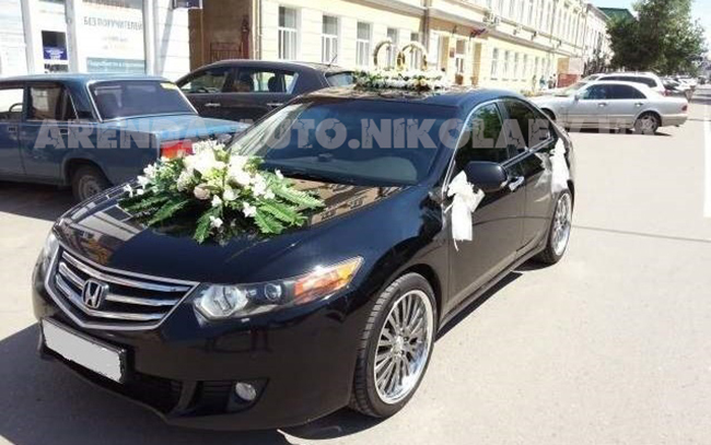 Аренда Honda Accord на свадьбу Николаев